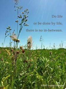 do life copy