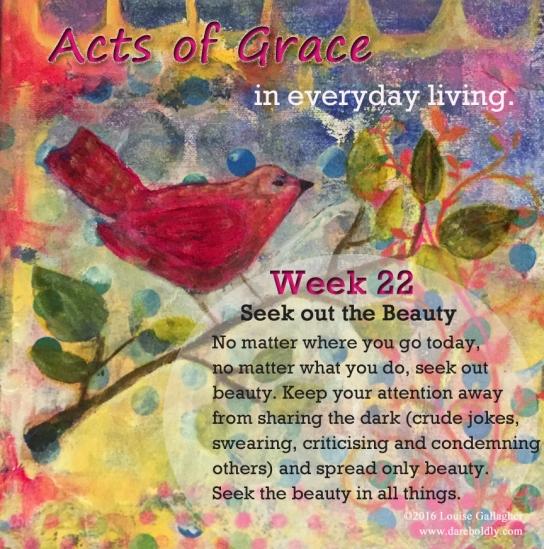 acts of grace week 22 Seek copy