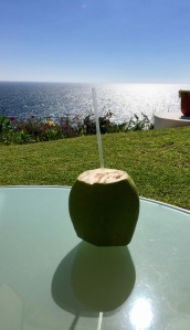 Coconut water au naturel